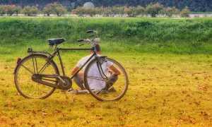 Cicloturismo bici natura