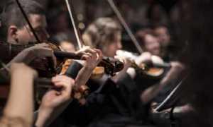 musica violini mani