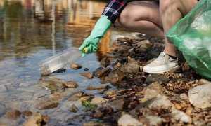 Plastica bottiglia ecologia