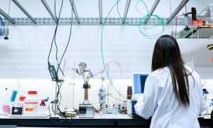 donna laboratorio